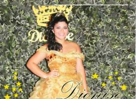 15 Anos Dionise